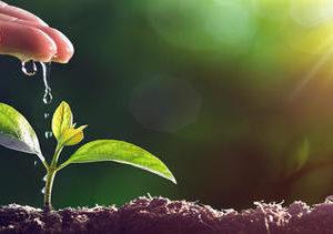 Mejoras En Nuestro Sistema De Gestión Ambiental